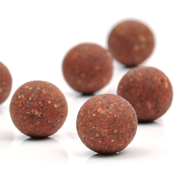 Short term preserved boilies